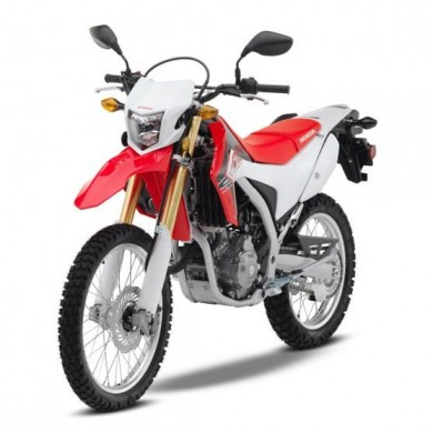 Honda CRF 250L <br> (Group D1)